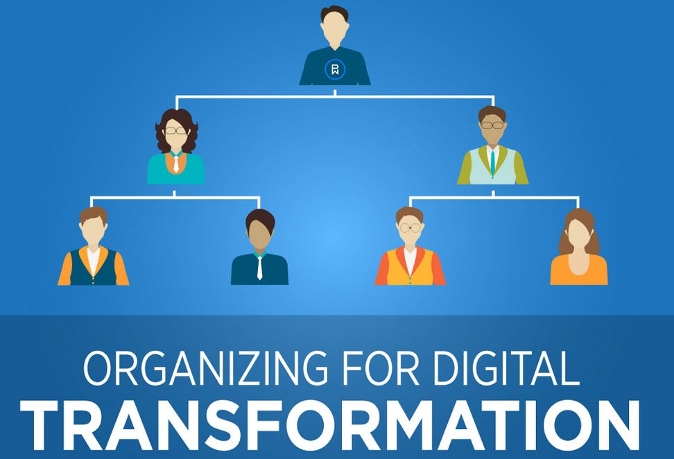 roles-for-a-successful-digital-transformation